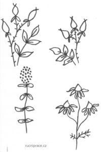 Předloha na vyšívání bylinek